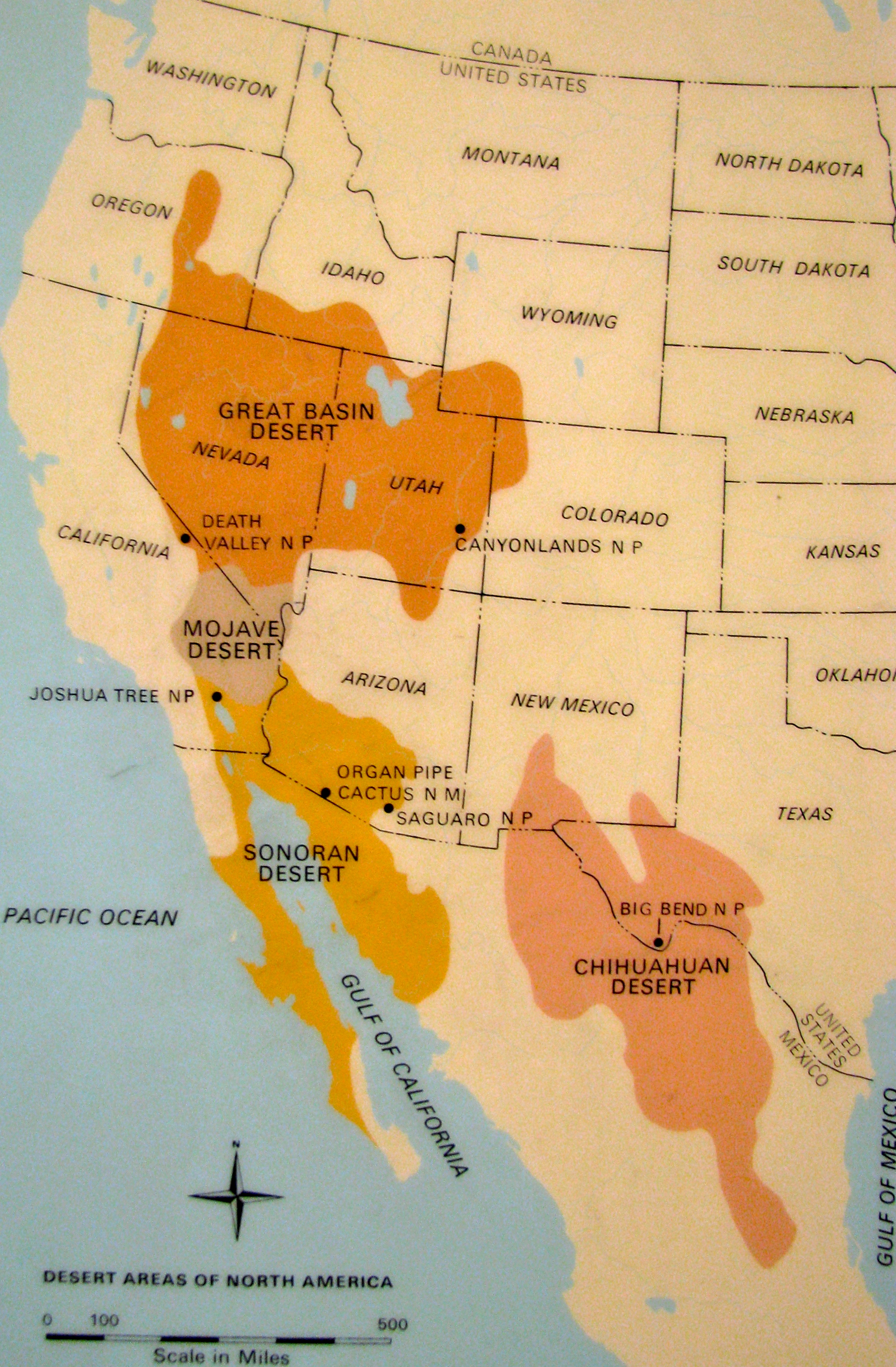 Chihuahuan and Great Basin Deserts